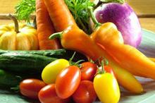 加賀野菜など地物野菜料理のイメージ写真