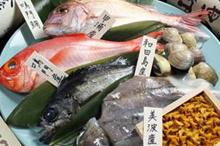 鳴門鯛・阿波の海鮮のイメージ写真