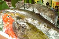 魚・海鮮類がおいしいお店のイメージ画像