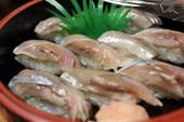 羽衣鮨のおすすめレポート画像1