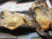 牡蠣屋の牡蠣屋定食 焼きがき2ヶ、かき飯小、カキフライ、牡蠣のオイル漬け、牡蠣入り赤出しの写真