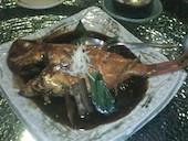 旬の魚 牡蠣と日本酒バー 炉端 ゆるり 橋本の金目鯛  一本姿煮付けの写真