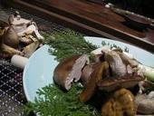 田舎料理いろり庵のおすすめレポート画像1
