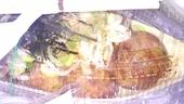 築地銀だこウィング上大岡店のおすすめレポート画像1