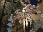 京町恋しぐれ 新宿 本館のおすすめレポート画像1